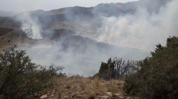 Пожар в Хосровском заповеднике - Sputnik Армения