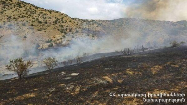 Горящий участок с деревьями у села Урцадзор  - Sputnik Армения