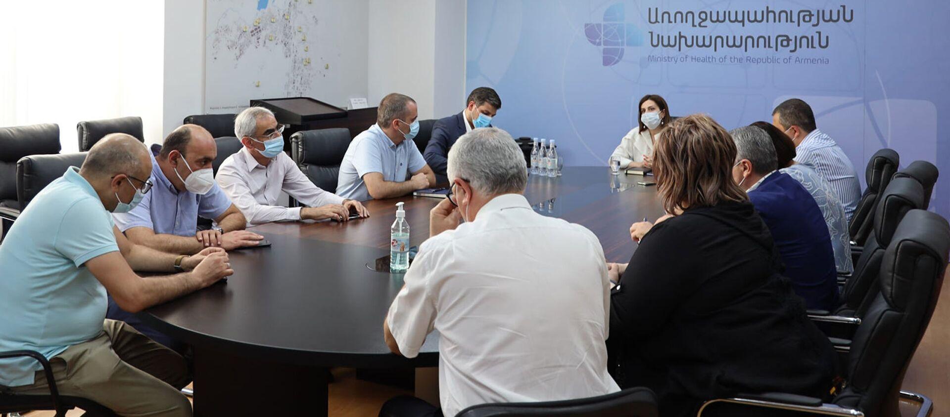 Министр здравоохранения Анаит Аванесян провела рабочую встречу-обсуждение с руководителями медорганизаций, занимающимися лечением больных COVID-19 (20 августа 2021). Еревaн - Sputnik Արմենիա, 1920, 20.08.2021