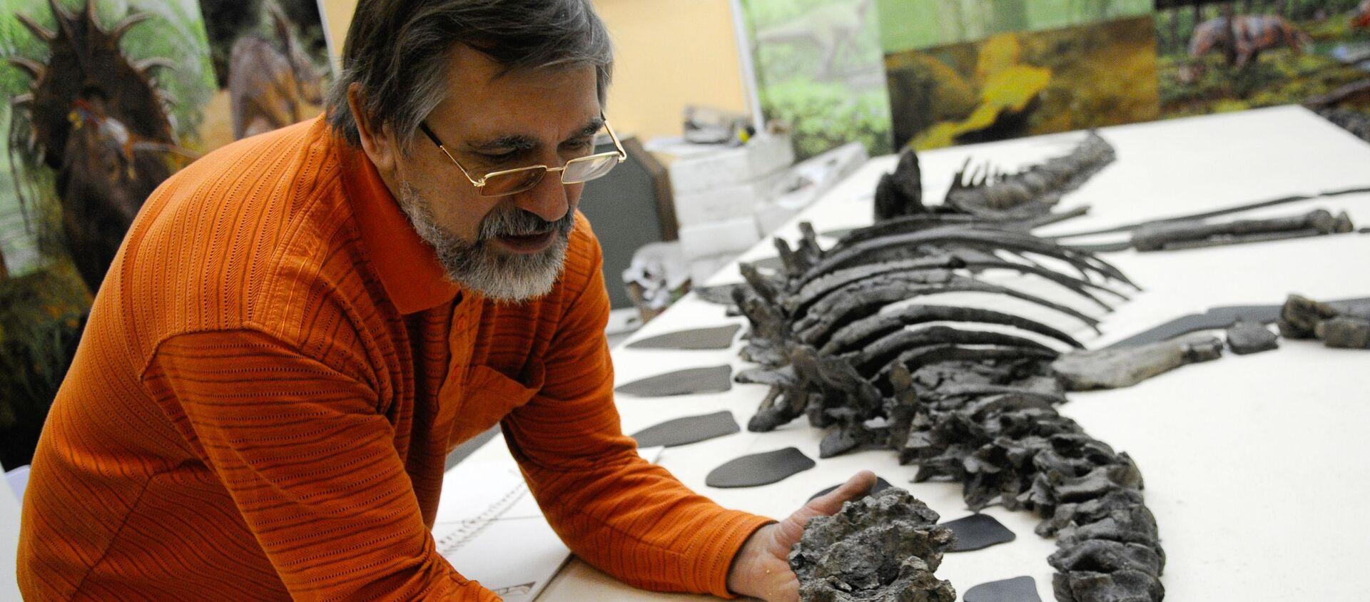Палеонтолог работает с ископаемым скелетом - Sputnik Армения, 1920, 23.08.2021