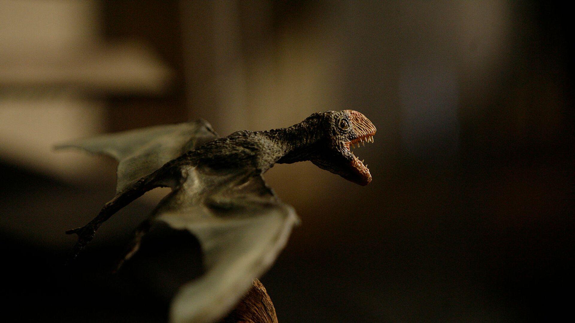 Точная копия птерозавра, или летающей рептилии в Национальном музее Рио-де-Жанейро - Sputnik Армения, 1920, 26.08.2021