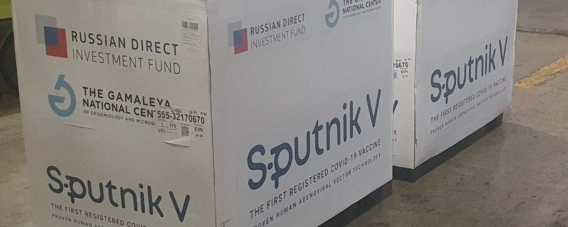 Очередная партия вакцины «Спутник-В» прибыла в Армению - Sputnik Армения, 1920, 05.10.2021