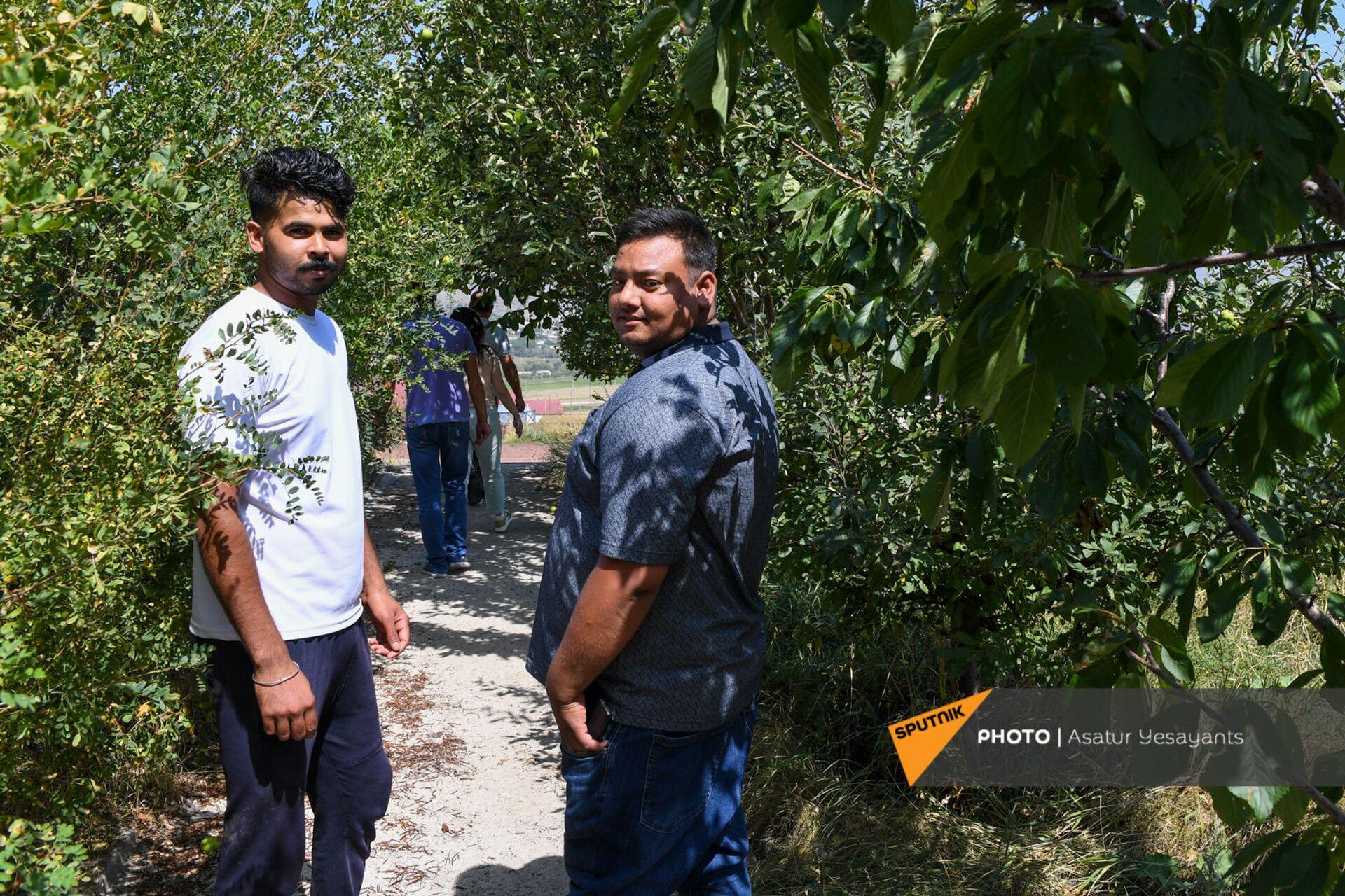 24-летний Кака и 26-летний Шаке на ферме компании Агрохолдинг - Sputnik Армения, 1920, 14.09.2021