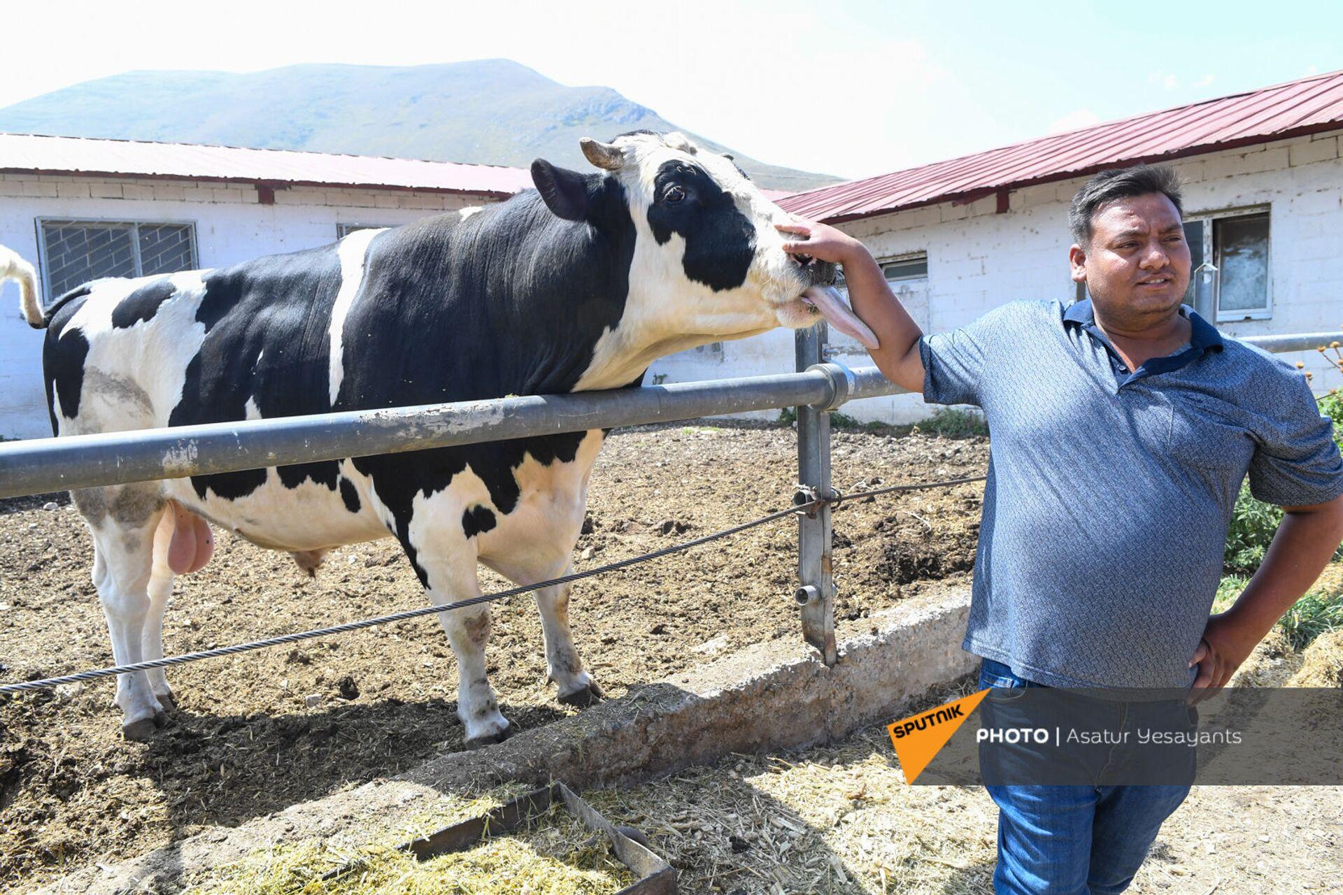26-летний Шаке из Индии на ферме компании Агрохолдинг - Sputnik Армения, 1920, 14.09.2021