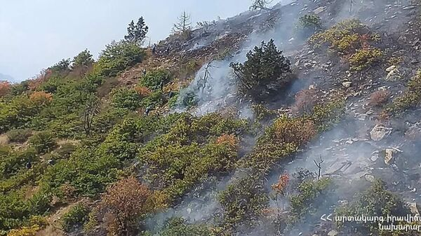 Пожар на территории национального парка Аревик - Sputnik Արմենիա