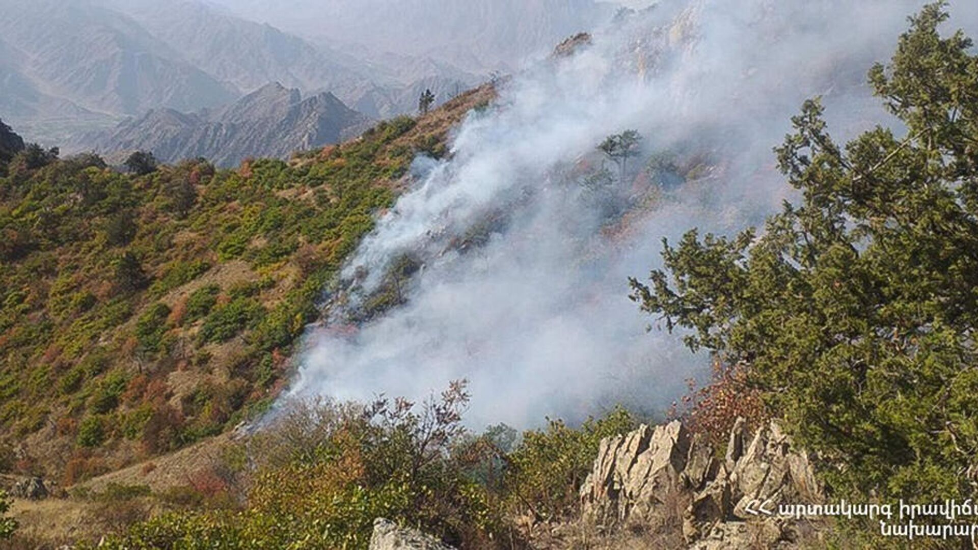Пожар на территории национального парка Аревик - Sputnik Армения, 1920, 26.09.2021