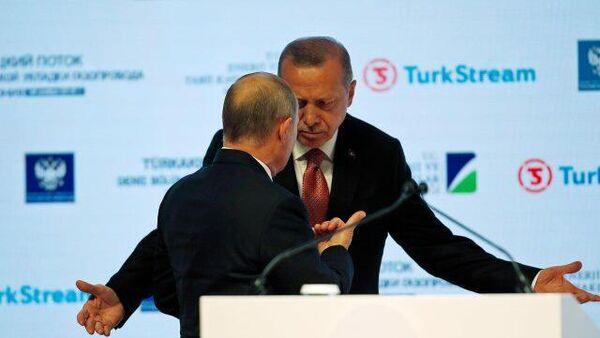 Ռուսաստանն ու Թուրքիան քաղաքական առումով հակադիր ճամբարներում են. Խուդավերդյան  - Sputnik Արմենիա