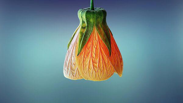 Лампа в виде цветка - Sputnik Армения