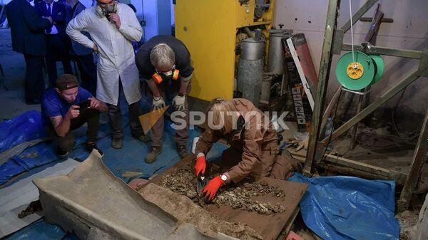 Найденный в Гюэносе свинцовый саркофаг (V-VI вв) - Sputnik Армения