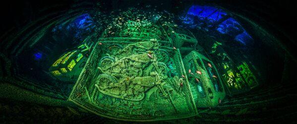 2018 Underwater Photographer of the Year ստորջրյա լուսանկարների մրցույթի հաղթող, գերմանացի լուսանկարիչ Տոբիաս Ֆրիդրիխի «CYCLE-WAR» լուսանկարը։ - Sputnik Արմենիա