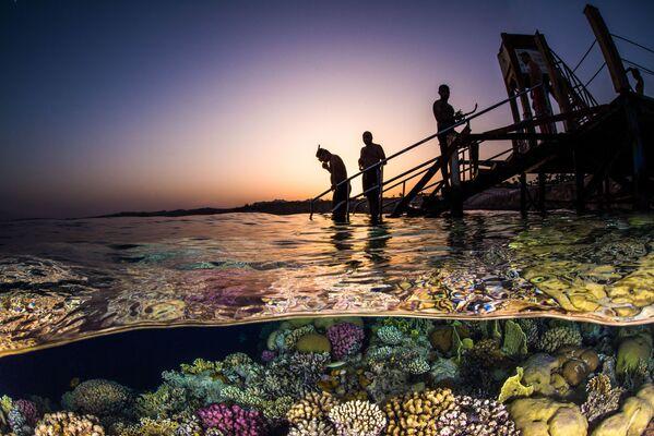 Wide Angle անվանակարգում երրորդ տեղը զբաղեցրած  ամերիկացի լուսանկարիչ Brook Peterson–ի «Evening Snorkel» լուսանկարը։ - Sputnik Արմենիա