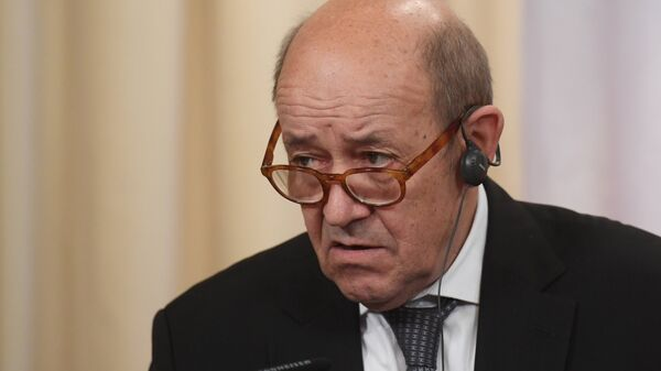 Встреча глав МИД РФ и Франции С. Лаврова и Жан-Ив Ле Дриана - Sputnik Армения