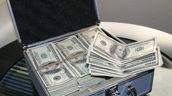 Кейс с долларами - Sputnik Армения