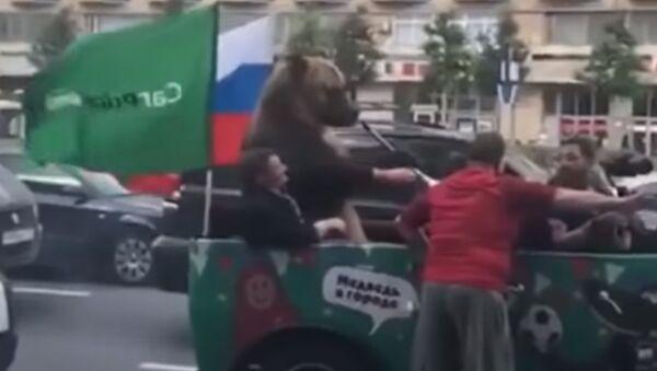 Медведь празднует победу сборной России - Sputnik Армения