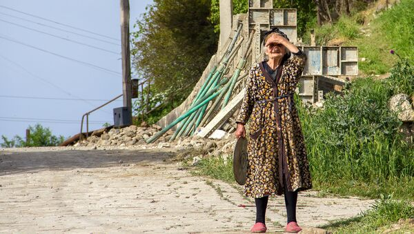 Бабушка на дороге - Sputnik Արմենիա