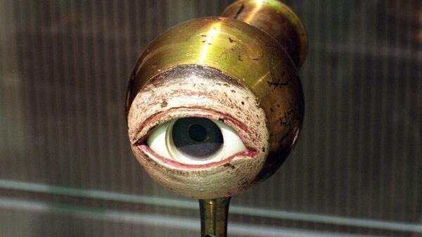 Демонстрационная модель глаза - Sputnik Армения