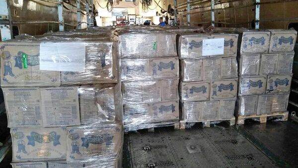 Отправка гуманитарного груза из Армении в Сирию - Sputnik Армения