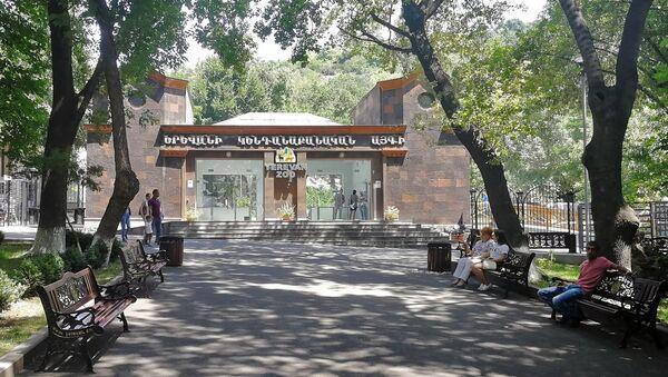 Ереванский зоопарк - Sputnik Արմենիա