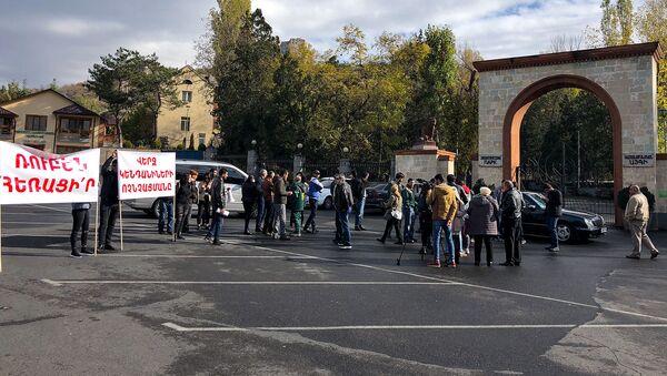 Акция протеста перед ереванским зоопарком (17 ноября 2018). Еревaн - Sputnik Армения