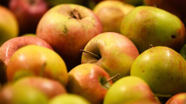 Яблоки на прилавке - Sputnik Армения
