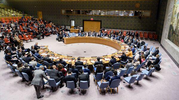 Совет Безопасности ООН рассматривает письменное обращение постоянного представителя Сербии при ООН (17 декабря 2018). Нью-Йорк - Sputnik Армения