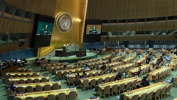 Заседание Генеральной Ассамблеи ООН в ознаменование отмены рабства и трансатлантической работорговли (21 ноября 2018). Нью-Йорк - Sputnik Армения