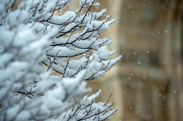 Երևանում այս տարի առաջին անգամ ձյուն եկավ - Sputnik Արմենիա