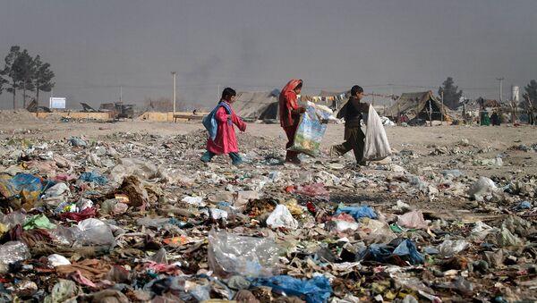Афганские дети в поисках коробок на помойке для костра (22 ноября 2010). Кабул - Sputnik Армения