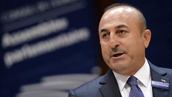 Министр иностранных дел Турции Мевлют Чавушоглу выступает с речью в Парламентской ассамблее Совета Европы (12 октября 2016). Страсбург - Sputnik Արմենիա