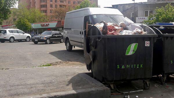 Рога и копыта в мусорном контейнере в центре Еревана - Sputnik Արմենիա