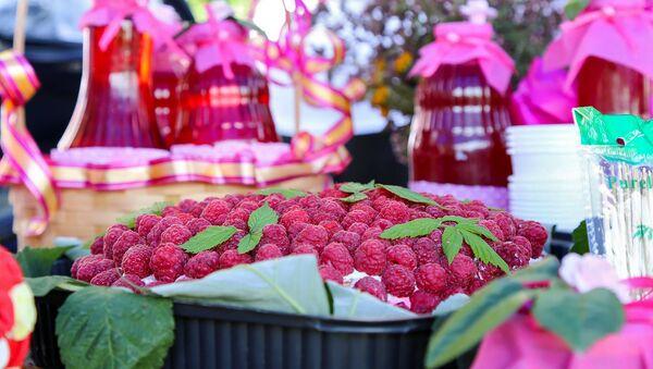 Фермерские кооперативы по выращиванию ягод в Сисианском регионе, Армения - Sputnik Армения