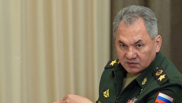 Министр обороны РФ Сергей Шойгу - Sputnik Армения