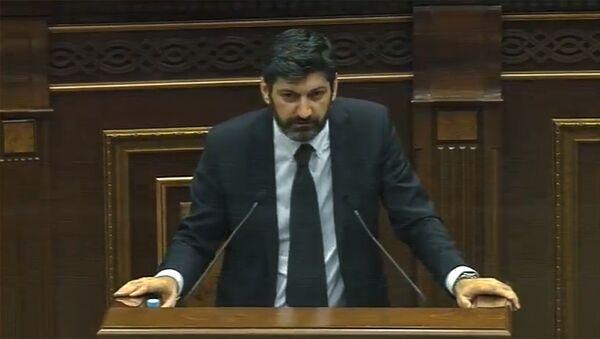 Выступление Ваге Григоряна в Парламенте (18 июня 2019). Еревaн - Sputnik Армения