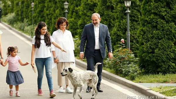 Семья премьер-министра Никола Пашиняна во время встречи с детьми из диаспоры (21 июня 2019). Еревaн - Sputnik Արմենիա