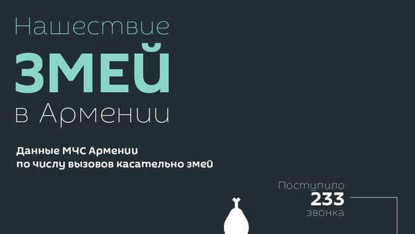 Нашествие змей в Армении - Sputnik Армения