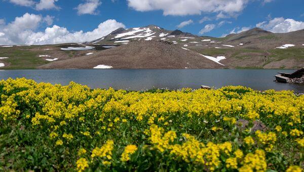 Озеро Кари на горе Арагац - Sputnik Армения