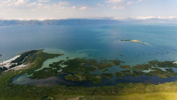 Озеро Севан зацвело - Sputnik Արմենիա