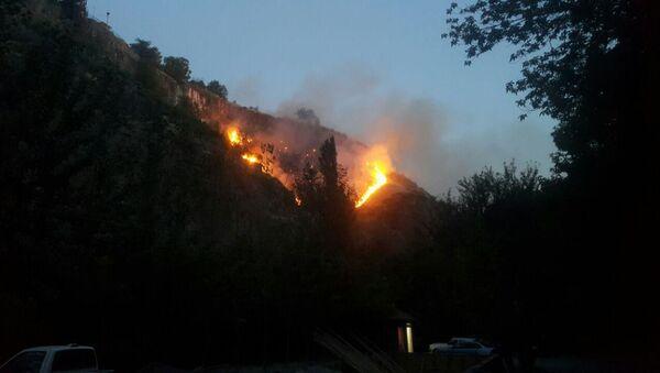 Пожар в Арзни - Sputnik Արմենիա