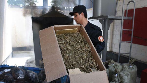 Уничтожение наркотических средств в Таджикистане - Sputnik Армения