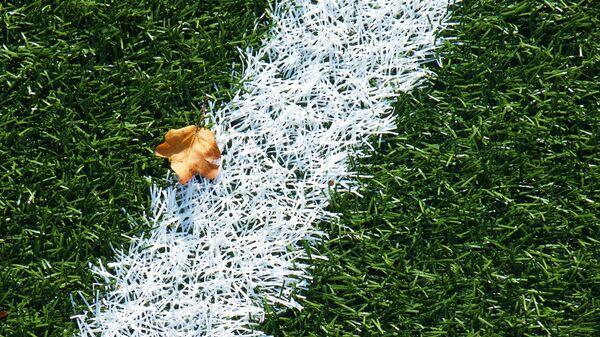 Газон на футбольном поле - Sputnik Армения