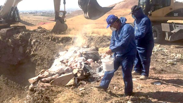 Сотрудники гос.структур уничтожили остатки мяса, хранящиеся на складах Дзюник сарнаран - Sputnik Արմենիա