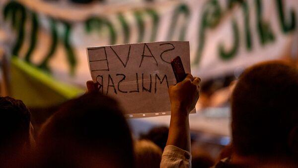 Акция протеста против эксплуатации Амулсара перед Домом правительства (11 сентября 2019). Еревaн - Sputnik Армения