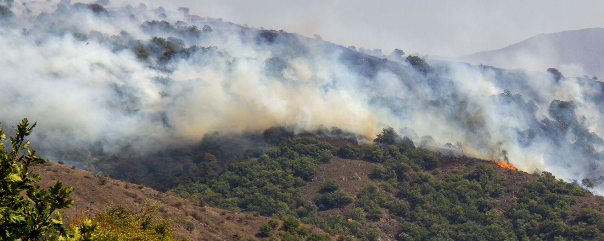 Лесной пожар близ сел Личк и Таштун (21 сентября 2019). Сюник - Sputnik Армения, 1920, 23.09.2021