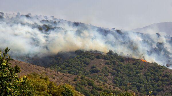Лесной пожар близ сел Личк и Таштун (21 сентября 2019). Сюник - Sputnik Армения