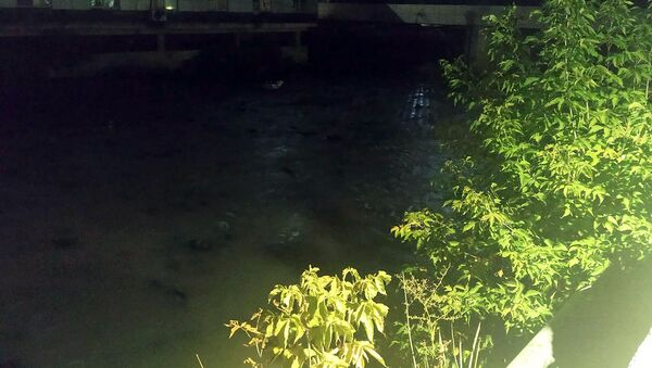 Загрязненная река Вохджи - Sputnik Արմենիա
