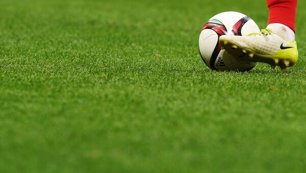 Футбольное поле, архивное фото - Sputnik Армения