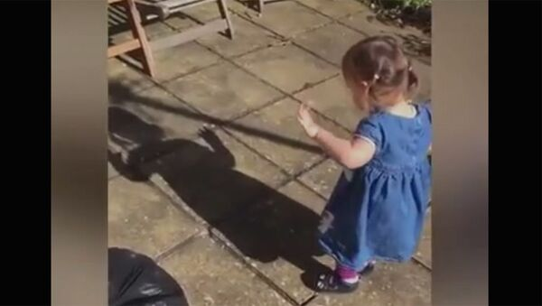 Малышка знакомится со своей тенью - Sputnik Армения