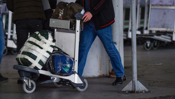 Пассажир с тележой для багажа в аэропорту Звартноц - Sputnik Արմենիա