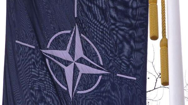 Развал НАТО: сможет ли альянс сохранить единство - Sputnik Армения