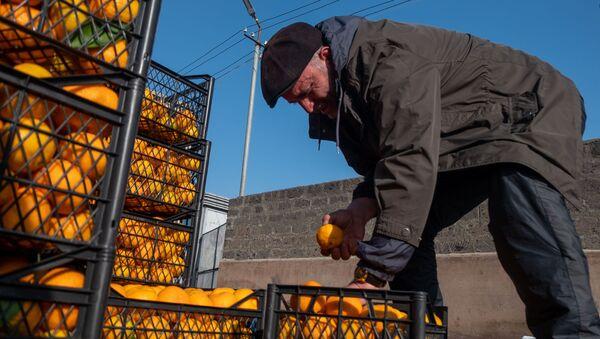 Оптовый рынок в Армавире - Sputnik Армения